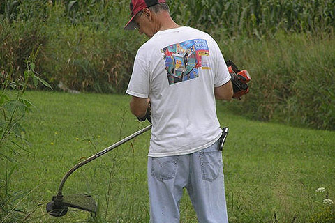 Best Cheap Weed Eater